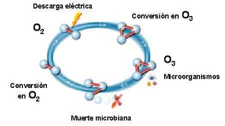 Higienización Mediante Ozono Limpiezas Sayago Mallorca