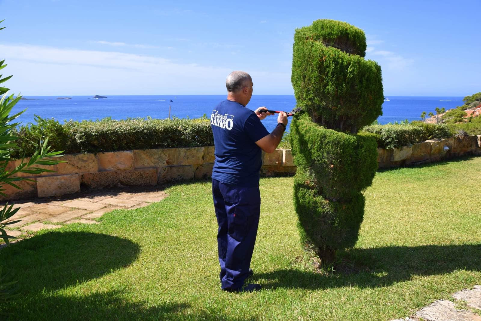mantenimiento de jardines (2)