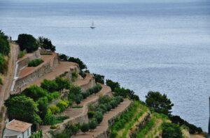 fotografía de Banyalbufar, Mallorca